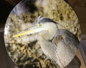 Great Blue Heron - Large Round Glass Cutting Board - 12 in diameter