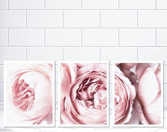 Set of 3 Peony Peonies Flower Art Print Poster Canvas Scandi Blush Pink and White Pink Flowers Blush Pink Floral