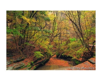 """Fine Art Color Landscape Photography of Starved Rock State Park in Illinois - """"LaSalle Canyon 1"""""""