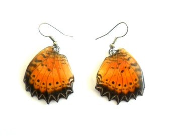 Real Butterfly Wings Earrings Handmade Jewelry Gift / Black / Natural Jewelry Earring