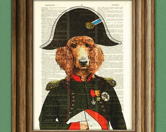 Napoodleon French Poodle as Napoleon illustration beautifully upcycled dictionary page book art print