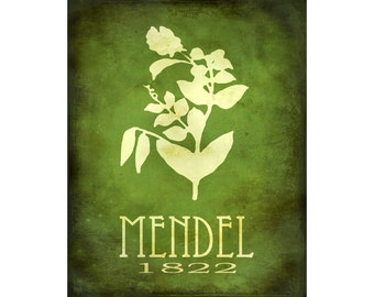Science Art Print 8x10 - Gregor Mendel Steampunk Art Poster, Rock Star Scientist Art, Pea Plant Genetics, School Art, Geneticist Wall Decor