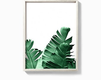 Banana leaf print, banana leaf art, leaf print, palm leaf, palm, banana leaf poster, botanical print, palm print, banana leaves, palm leaves