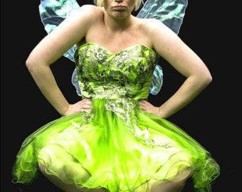 Large Tinkerbell Fairy Wings,  with added glitter and swirls
