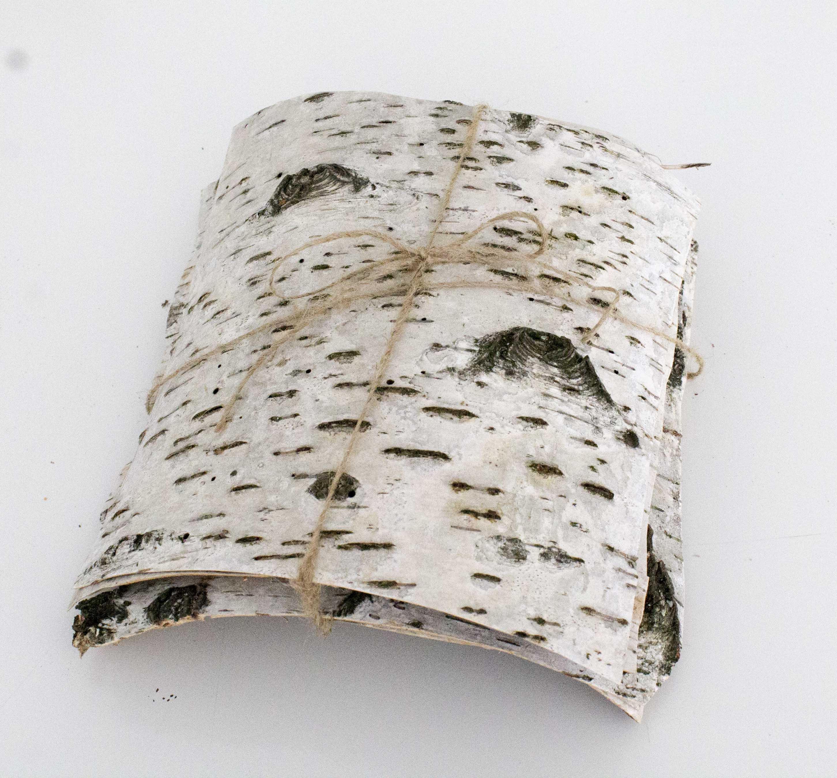 5 Natural birch bark sheets birch bark craft birch wood sheets birch ...
