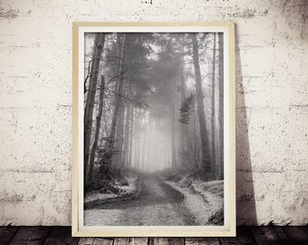 Abstract Nature Photo, Path Photography, Dirt Road Print, Black and White Print, Wilderness Art, Mysterious Wall Art, Modern Nature Print