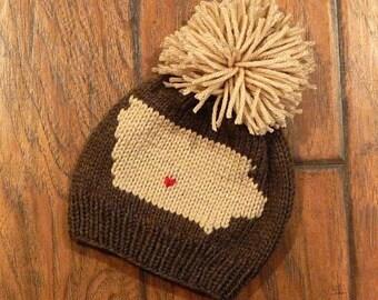 Iowa Hometown Knit Hat : Baby Hat, Toddler Hat, Child Hat, Adult Hat