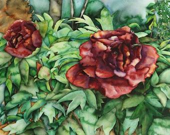 Peony Painting, Peony Print, Fine Art Giclee Print, Watercolor Print, Watercolor Painting, Flower, 11 x 15, Unmatted