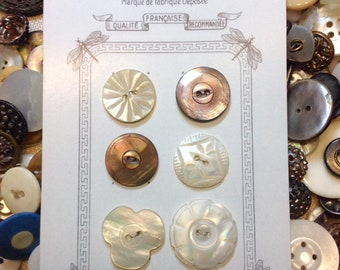 """Vintage Pearl Shell Buttons, 6 buttons ranging from 3/4""""to 7/8"""" and 12 diminutive 3/8"""" buttons"""