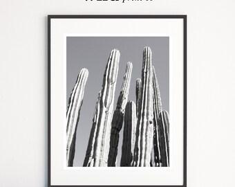 Cactus Print, Desert Print, Cactus Wall Art, Modern Decor, Desert Art, Photography, Printable Instant Download, Large Poster Art