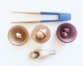 Acorn sorting toy, wood acorn set, Waldorf toy, Montessori toy, acorn sorting toy