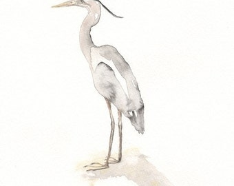 Great Blue Heron, Gray, wall art, beach art, beach decor, Watercolor Print