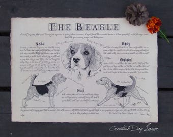 Antique styled dog standard - Beagle
