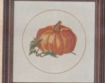 Helen Burgess Counted Thread Design. Pumpkin Pattern. HB4007.