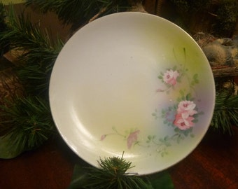 Hand Painted Nippon Dessert or Bread & Butter Plate    (T)