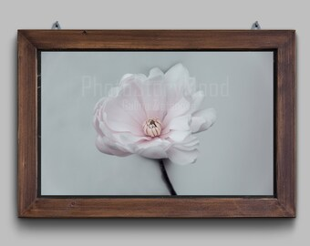 Magnolia Photography Spring decor Flower gift print Pink magnolia Gift for home Romantic gift photography Magnolia flower Magnolia  blossom