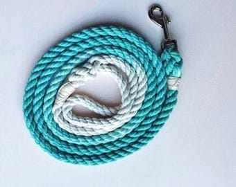 Aquamarine Solid Ombre or Marbled Rope Dog Leash