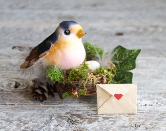 Bird's Nest Pregnancy Announcement/ Grandparents Pregnancy Announcement  / Going to be Grandma / Pregnancy Reveal /  Baby Announcement