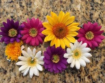 8 Flower Hair Clips