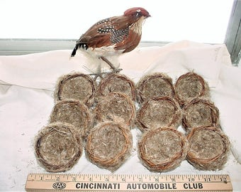 Vintage Lot 12 Craft Birds Nests and 1 Bird
