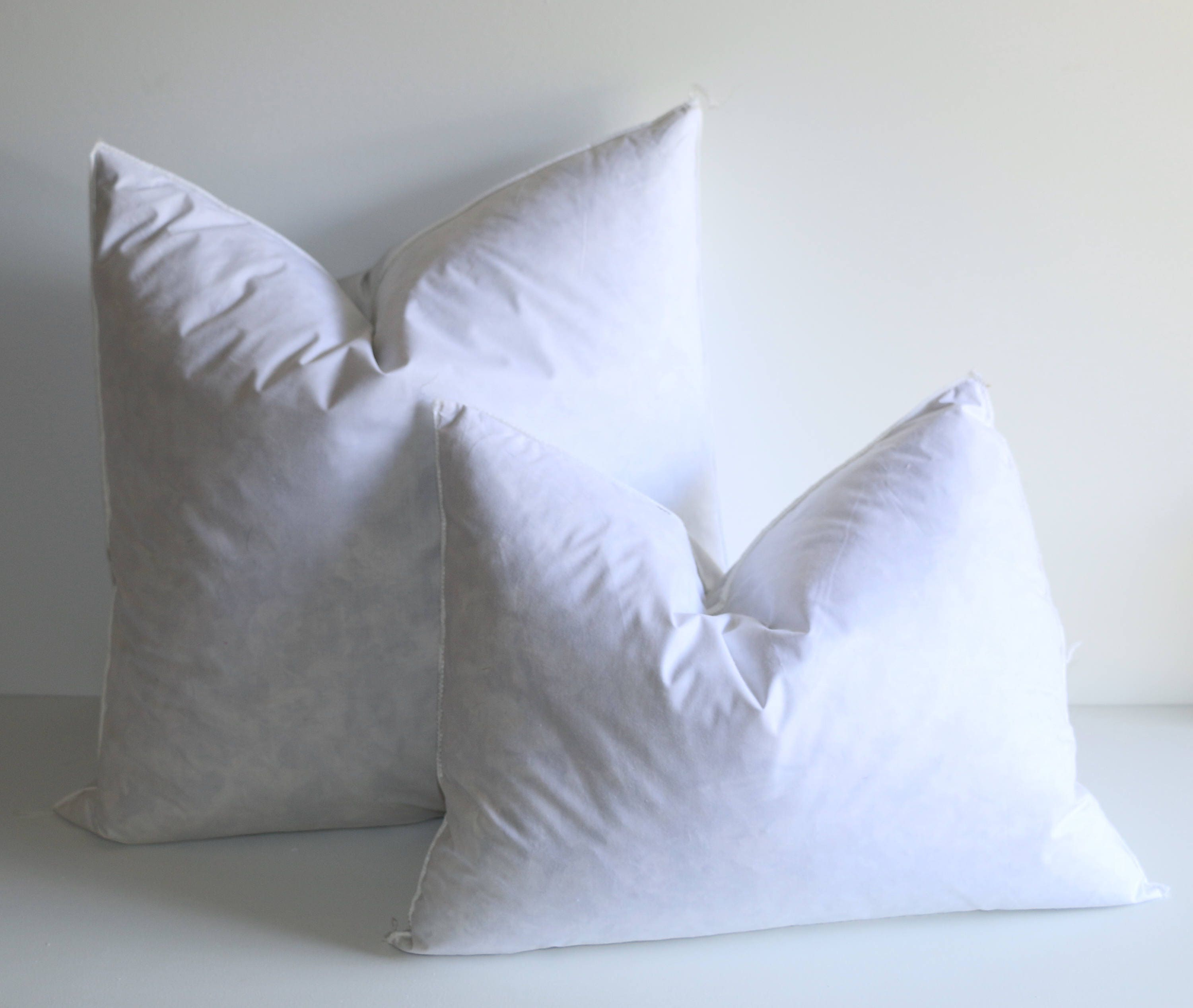 co asli s pillow form aetherair inserts forms