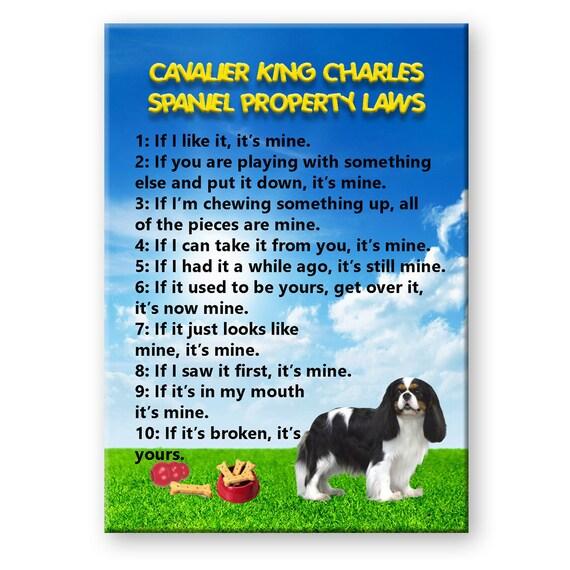 Cavalier King Charles Spaniel Property Laws Fridge Magnet No 1