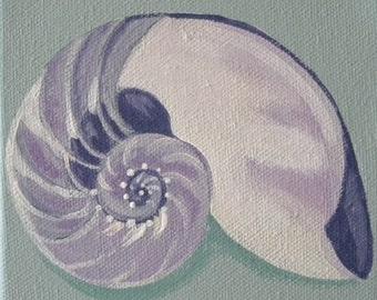 nautilus shell blank greeting card