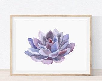 Home Decor,Pritnables,Wall Art,Wall Decor,Wall Art Prints,Wall prints,Botanical Wall Art,Succulent Prints,Digital Download,Watercolor Prints