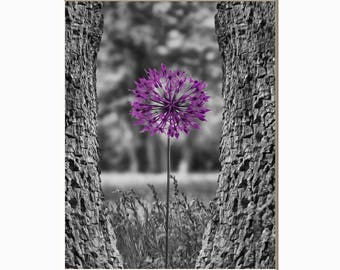 Black White Purple Wall Picture, Purple Floral Decor, Living Room, Bathroom, Bathroom Puprle Wall Art
