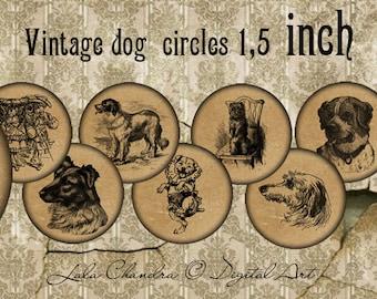 Vintage dog  circles 1,5 inch