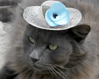 Spring Cat Hat - Elsa Hat for Pet - Winter Kingdom - Aquamarine Blue Flower - Easter Bonnet