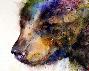 BLACK BEAR Large Watercolor Print by Dean Crouser