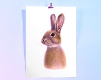 Bunny, Rabbit Watercolour Art Print. Bunny art, painting of animal, Animals Art. Nursery print.