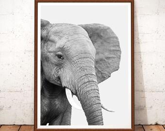 Elephant Print, Elephant Nursery Decor, Elephant Animal Print, Elephant Art, African Animal, Animal Art, Safari African,Animal Print, Poster