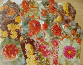 Set of 13 Vintage 1970s Photo Postcards Hand Punched Tags, Upcycled, Scrapbooking, Collage, Flowers, Bees, Gift Tags