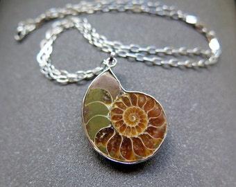 ammonite pendant necklace. stainless steel chain. mens jewelry. Canadian seller.