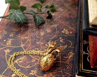 Anatomical heart necklace necklace