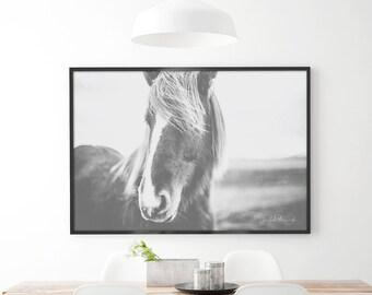 Wild Heart Horse Print