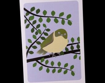 Greeting Card - Tauhou / Waxeye / Silvereye - single card