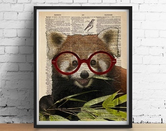 Red PANDA Bear Wearing Glasses Art Print Animal Portrait Poster Illustration Wall Decor Antique Dictionary Book Page Giclee