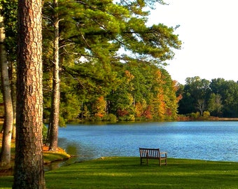 Nature Photography - A Place to Relax and Reflect - Southern, Travel, Lake, Fine Art Photography