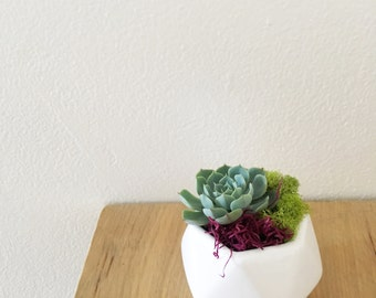 Geometric Planter - White