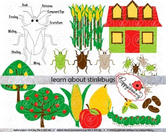 Learn About Stinkbugs Science: Clip Art Pack (300 dpi) Digital Images (transparent png files) Garden Bug Stink Bug Science Class Clipart