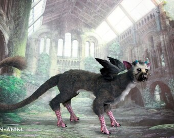 The Last Guardian Trico with a little wings, Trico last guardian, Trico