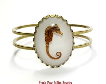 real seahorse hinged bronze cuff bracelet