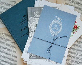 Vintage Paper Pack, Ephemera, book pages from children's, fiction, non-fiction, book plates, maps, illustrations