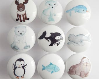Winter Animal Knobs, Polar Bear, Penguin, Narwhal Dresser Pulls - Made to Order - 1.5 Inches
