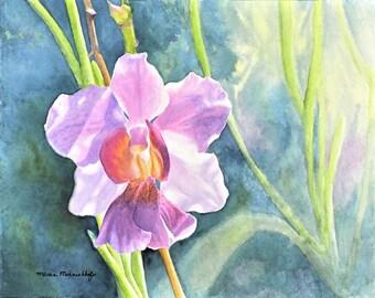 Purple Hawaiian Vanda Orchid Painting Print