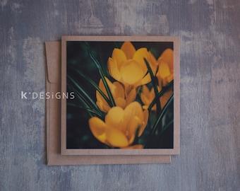 Crocus macro Photo Card - Spring came