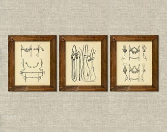 Equestrian horse tack bits bridles vintage printable wall art décor set of 3